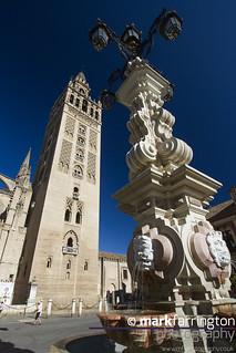 Giralda - Seville Cathederal