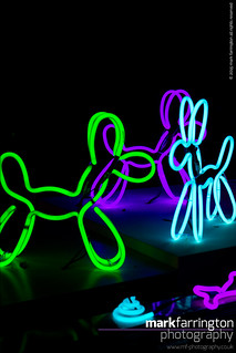 Neon Dogs by Deepa Man-Kler