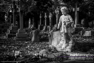 Grave of a Child