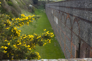 Fort Nelson Walls