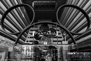 Fantasia Shop at Disney's...