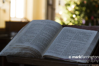 Bible & Christmas Tree...