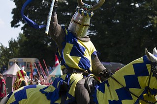Jousting & Falconry