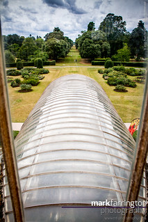 Palm House Vista