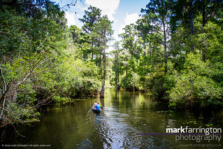 Lettuce Lake Canoes